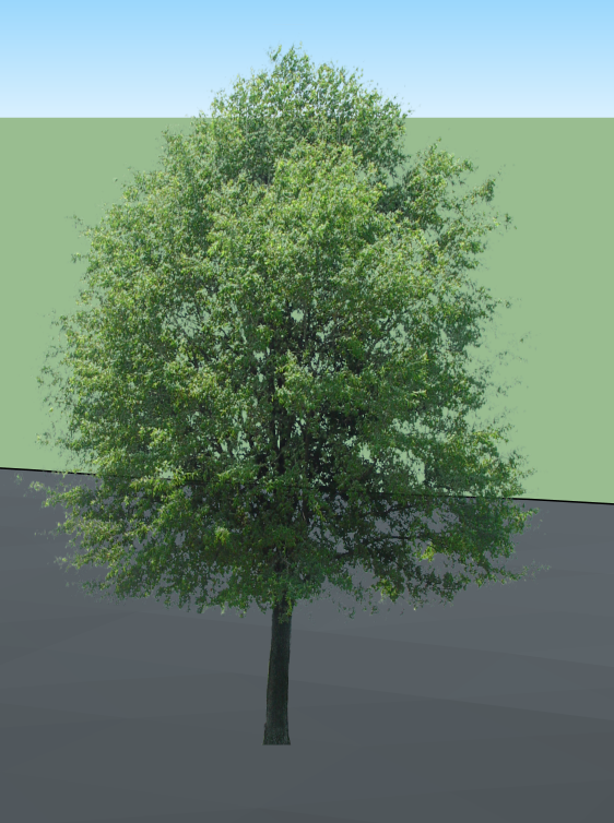 http://mau.hypotheses.org/files/2017/05/tree-1.png